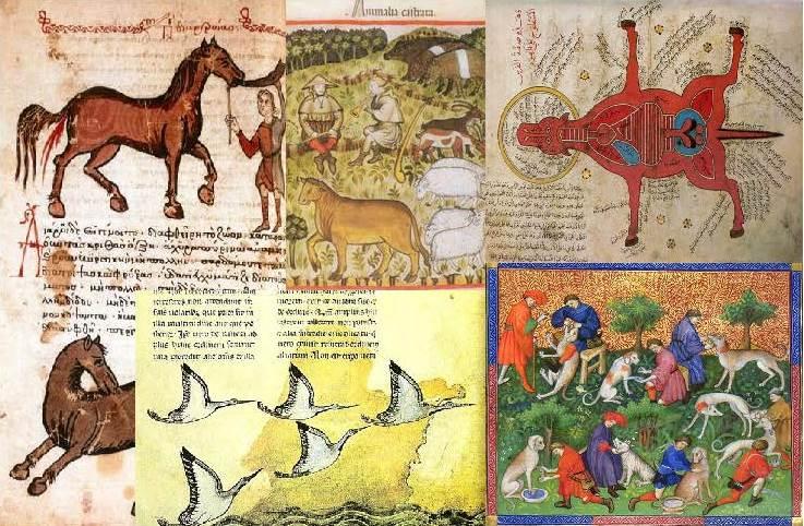 animals-medieval