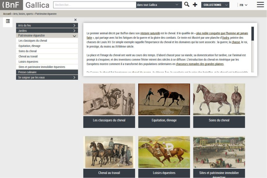patrimoni-equestre-frança