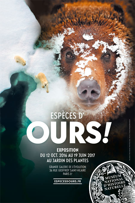 especes-ours-expo