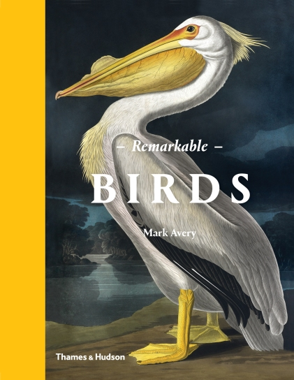 remarkable-birds