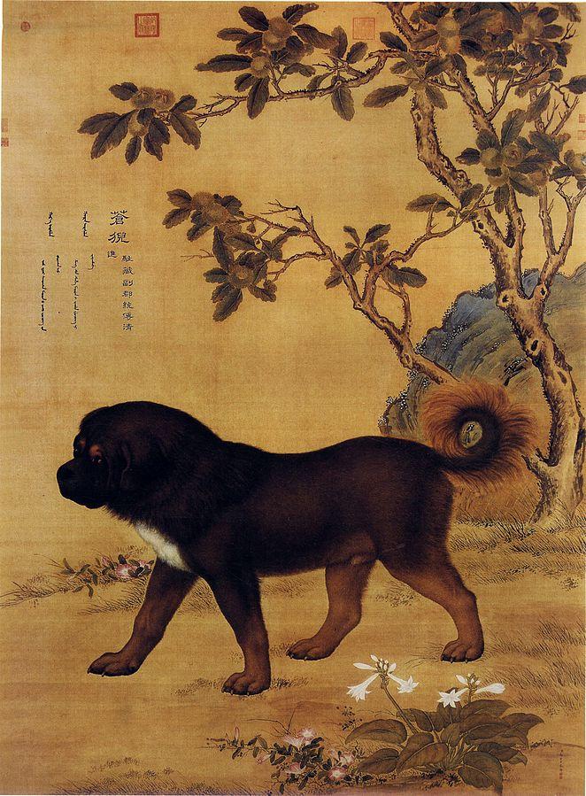 ten_prized_dogs_03